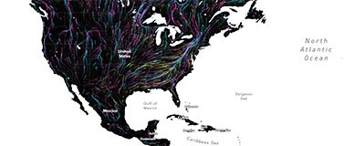 animal migration map of north america